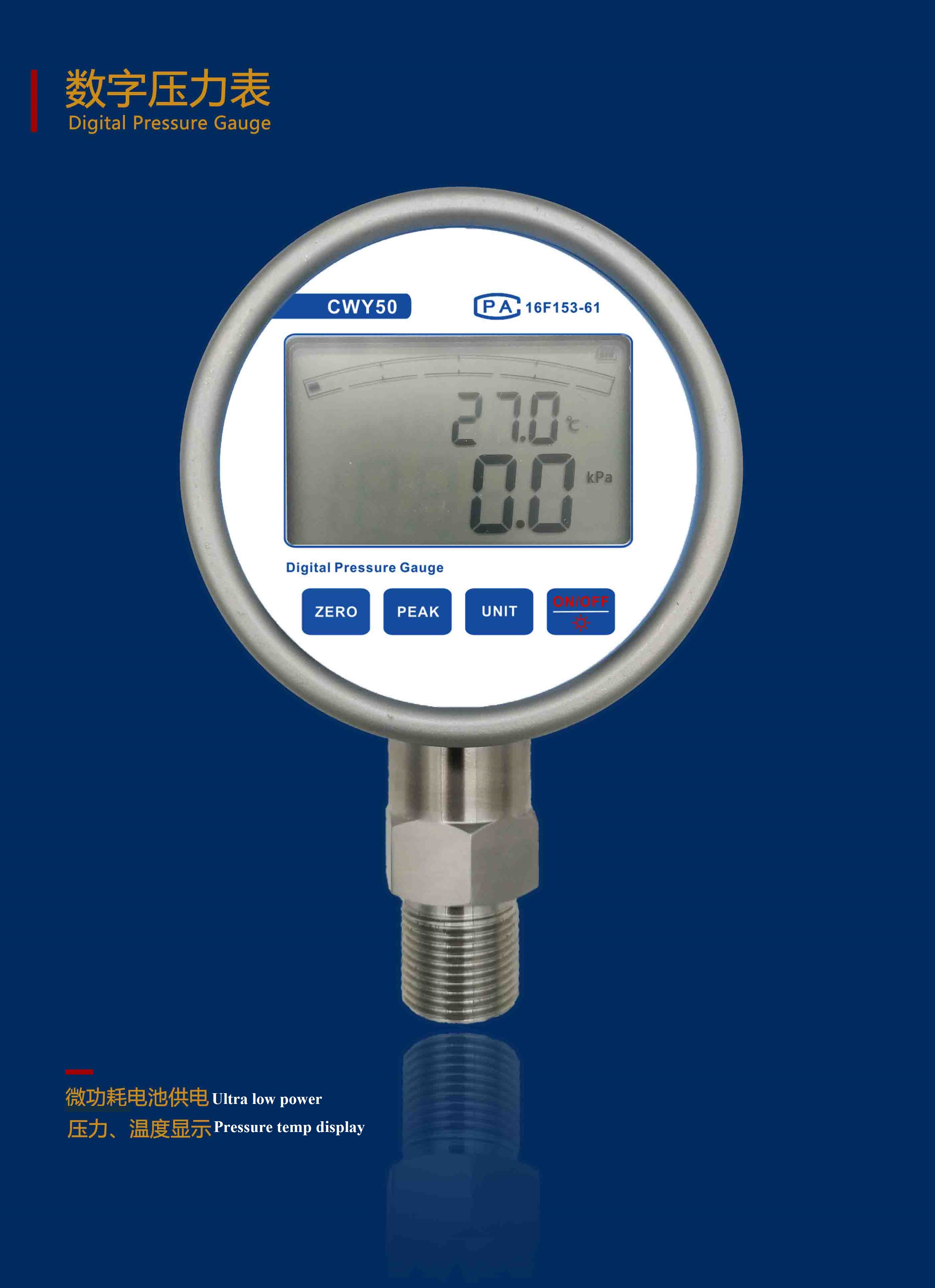precision digital pressure gauge-CWY50